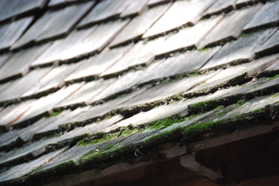 Rough roof