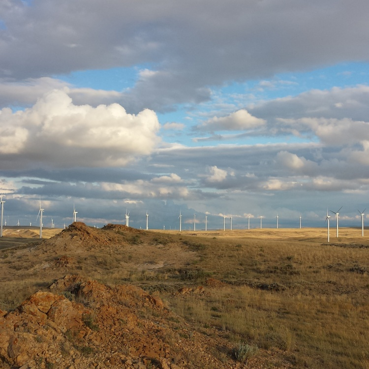 The wind turbines welcomed us as they always do.