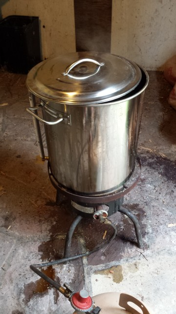 What's cooking in Penny's kettle? Why it's wort!