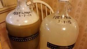 The yeast is pitched. Now hoping for fermentation.