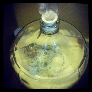 After 48 hours, the yeast is enjoying itself!