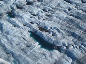 Glaciers - 6