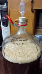 Here's my pumpkin ale, early in fermentation, with a well developed kraeusen.