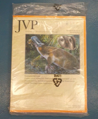 ...and an issue of the Journal of Vertebrate Paleontology. I'll read it when I have a spare moment. (Ha-ha-ha-ha)