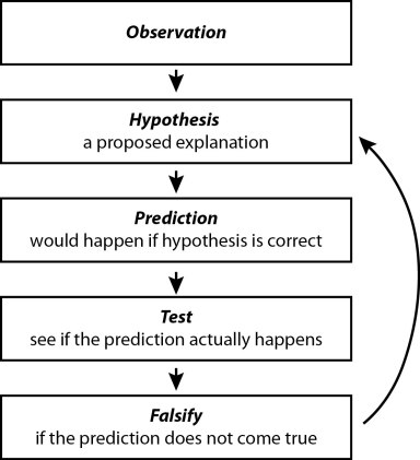 How the scientific method works, from observations to falsification. If a hypothesis is falsified, the hypothesis may be modified.