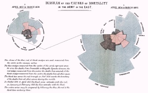 """""""Diagram of the causes of mortality in the army in the East"""" by Florence Nightingale."""