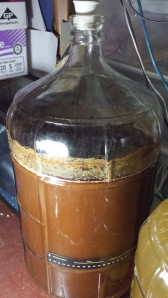 After a couple of days, the fermentation calmed down. In a few more days it'll be ready to move to a smaller secondary fermentor.