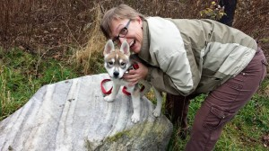Puppy on gneiss! Taken on November 28, 2015.
