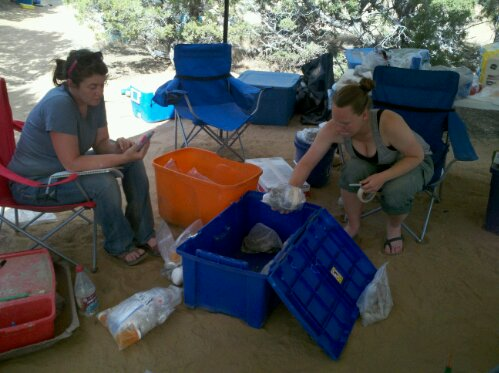 Here, I'm under a canopy in the Uinta Basin of Utah. They're cataloging fossils while I'm blogging on my phone.