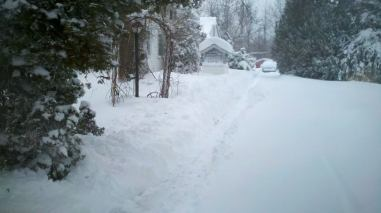 By the time we were done, our driveway looked a lot like the trench on the Death Star.