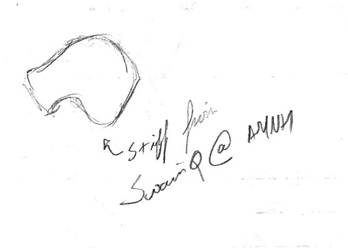 A quick sketch of the type right lower fourth premolar of Krauseia from the Torrejonian-aged Swain Quarry. I drew this while visiting the collections at the American Museum of Natural History.