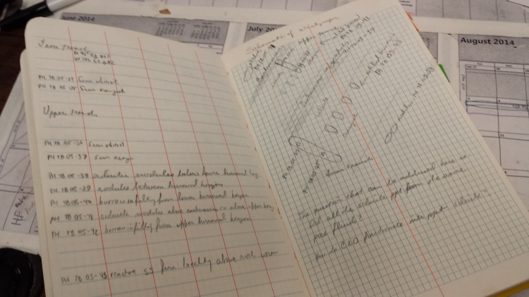 Some of my field notes from 2005.